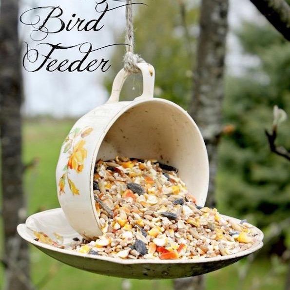 pticja krmilnica iz polomljene salcek