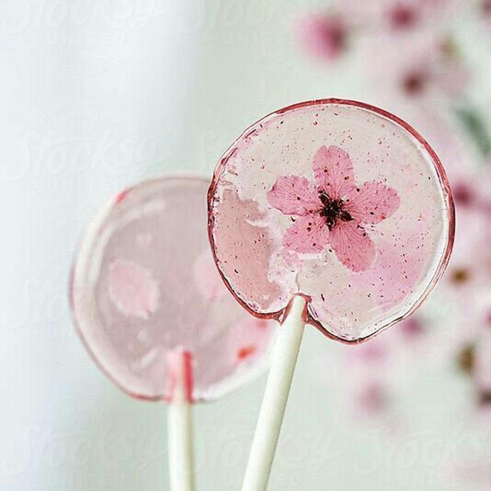 Cesnjev cvet beautyfull blog lizika