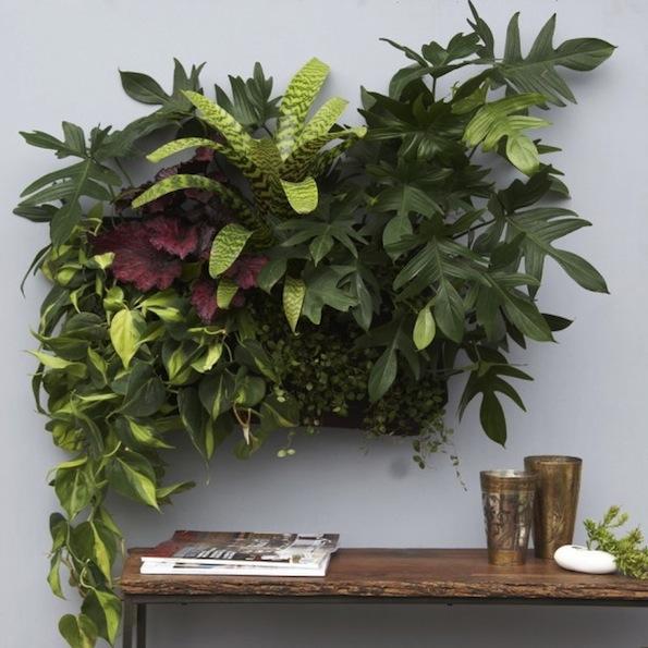 Beautyfullblog zeleni-vrt-v-stanovanju 14
