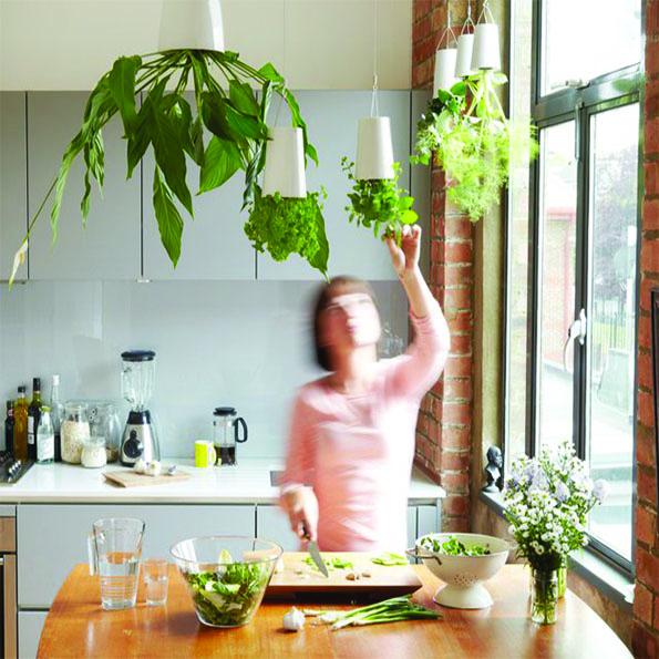 Beautyfullblog zeleni-vrt-v-stanovanju 2