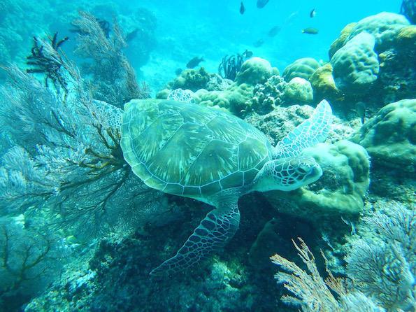 Beautyfullblog Gili Lombok Druzinske pocitnice 19