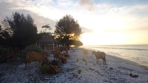 Beautyfullblog Gili Lombok Druzinske pocitnice
