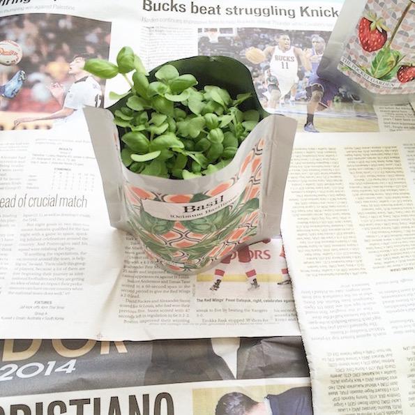 vrtnarjenje v stanovanju bazilika pocket garden Beautyfullblog 12