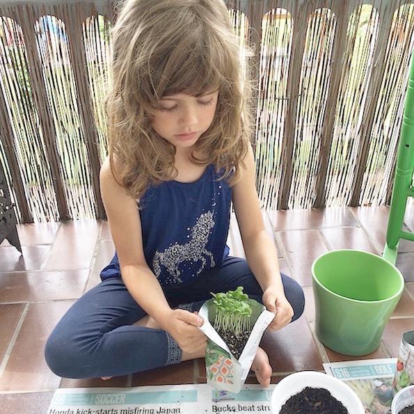 vrt doma spomincice pocket garden Beautyfullblog 1