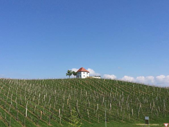 Zlati gric vinogradniski dvorec Beautyfullblog