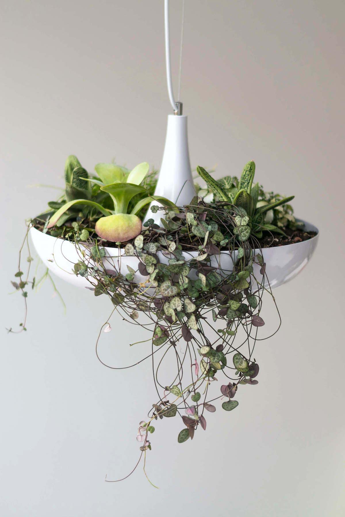 sveže zdrave navade rauch fresh gardenia Beautyfullblog