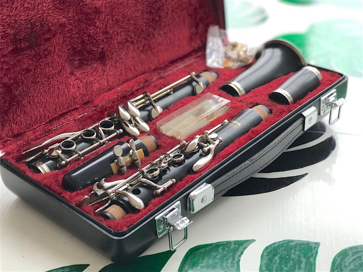 40 rojstni dan darilo zanj klarinet