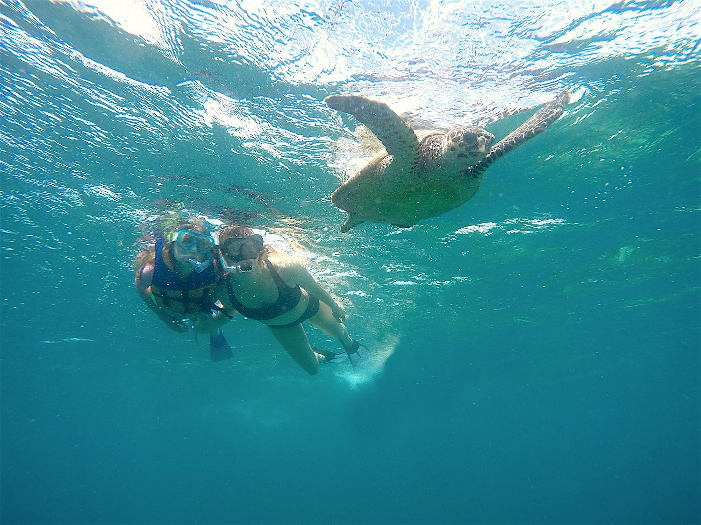 nika veger slovenske koapke maldivi mila krasna plavanje z zelvo