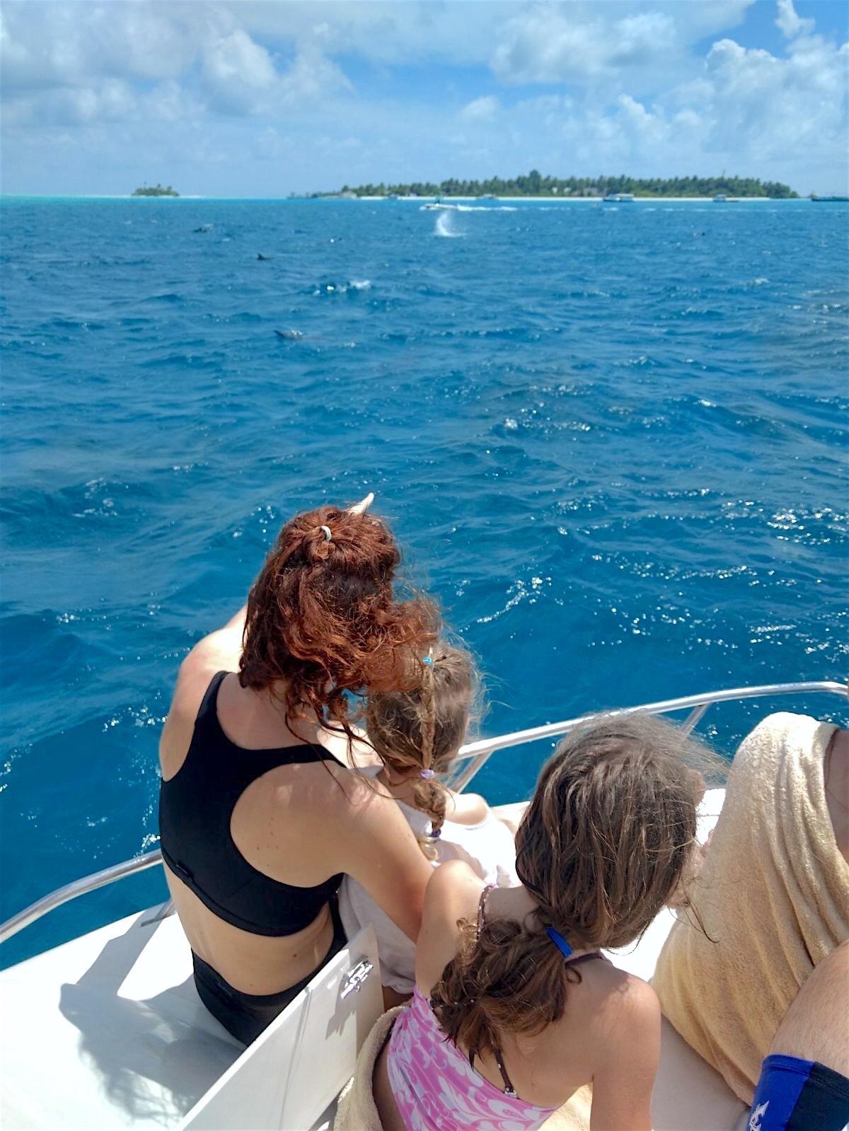 maldivi on budget poceni maafushi plavanje z delfini