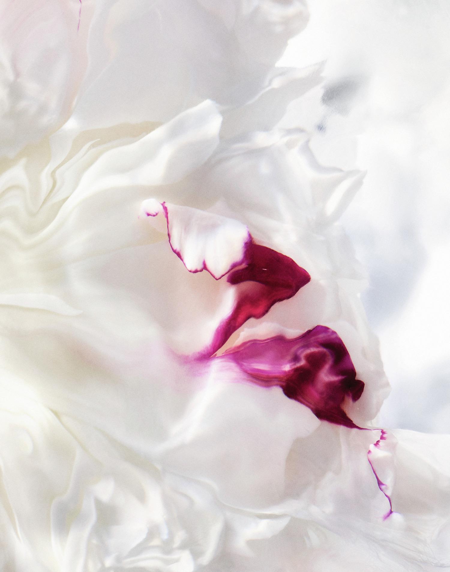 potonike joy by dior beautyfullblog