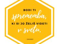 medex med slovenski cebela beautyfull blog 3