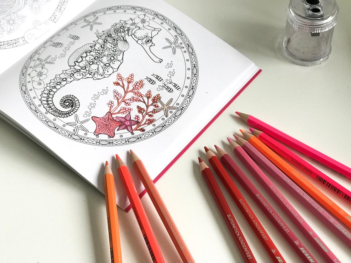 pantone koralna barvice jolly beautyfull blog