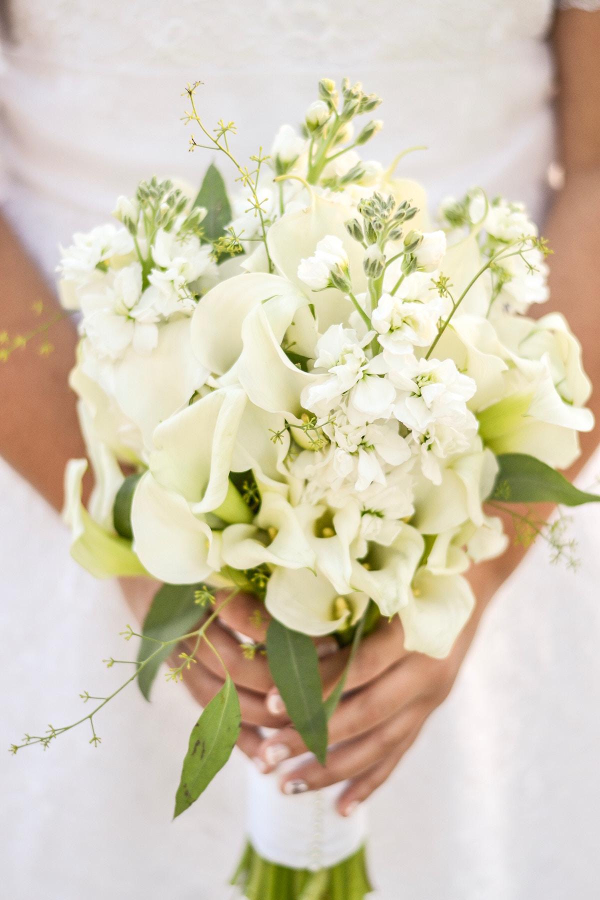 porocni sopek gardenia beautyfull blog shelbey-miller unsplash
