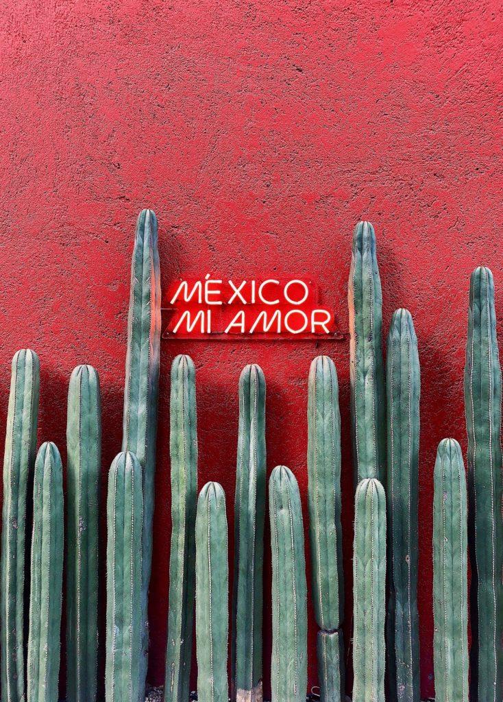 Mehika Holbox druzinske pocitnice beautyfull blog nika veger kaktus