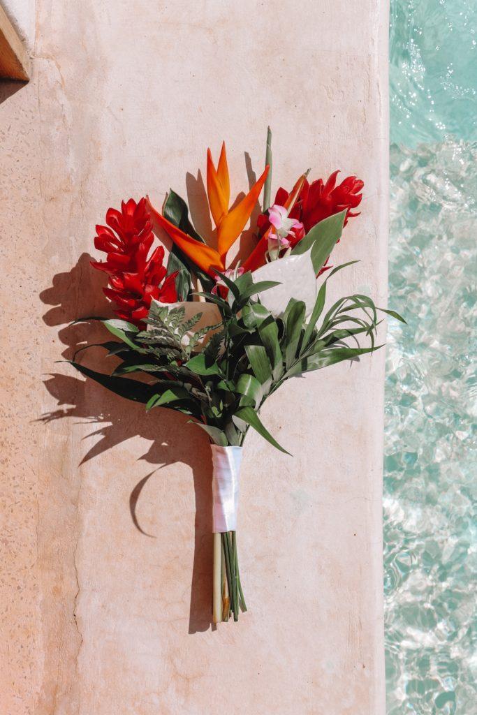 Mehika Holbox rože