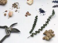 evkaliptus vejica tuš prha nika veger beautyfull blog dm